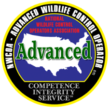 NWCOA Advanced Wildlife Control Operator in Massachusetts