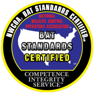 Ultra Safe Certified Bat Removal Experts