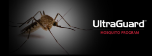 UltraGuard Mosquito Treatment Program In Massachusetts