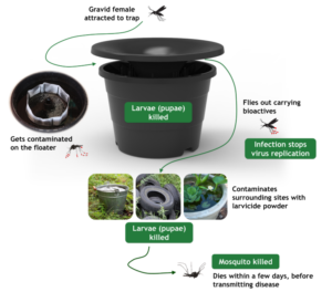 How The In2Care Mosquito System Works
