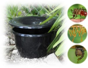 Ultra Safe Pest Is a Licensed In2Care Mosquito Trap Installer In Massachusetts